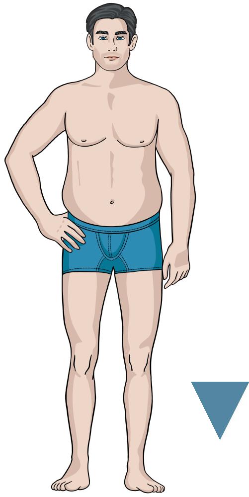 Jeansfinder Body Icon V-Type